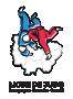 Logo BOURGOGNE-FRANCHE-COMTE JUDO
